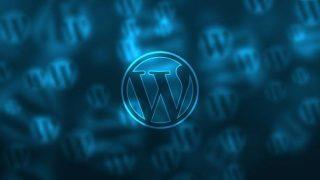 WordPress製の新ミニサイトへGoogle検索流入が発生するまでの期間と施策
