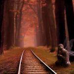 森の奥へ続く道